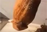Vollgeschissen Porno mit geilen Weibern
